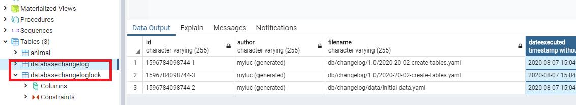 databasechangelog хранит когда какие скрипты запускались, (а databasechangeloglock ставит блокировки, если несколько экземпляров приложений поднимаются на одной базе одновременно)